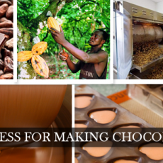 Making of Chocolate from cocoa Beans